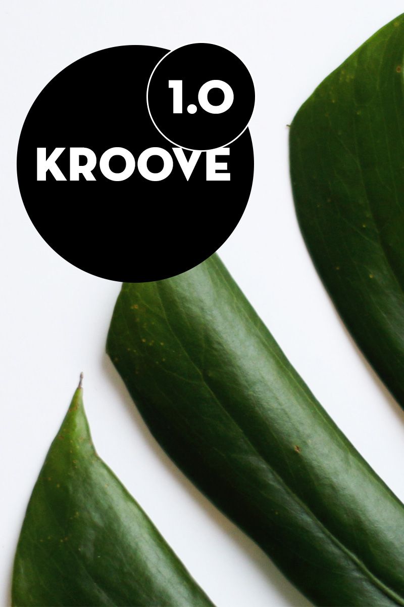 Kroove - Coming Soon PSD Template