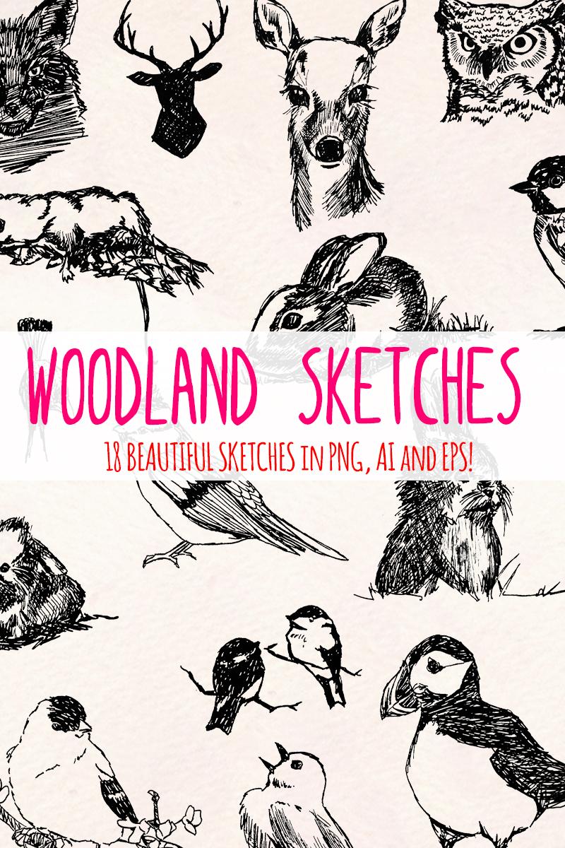 19 Forest Woodland Illustration - screenshot