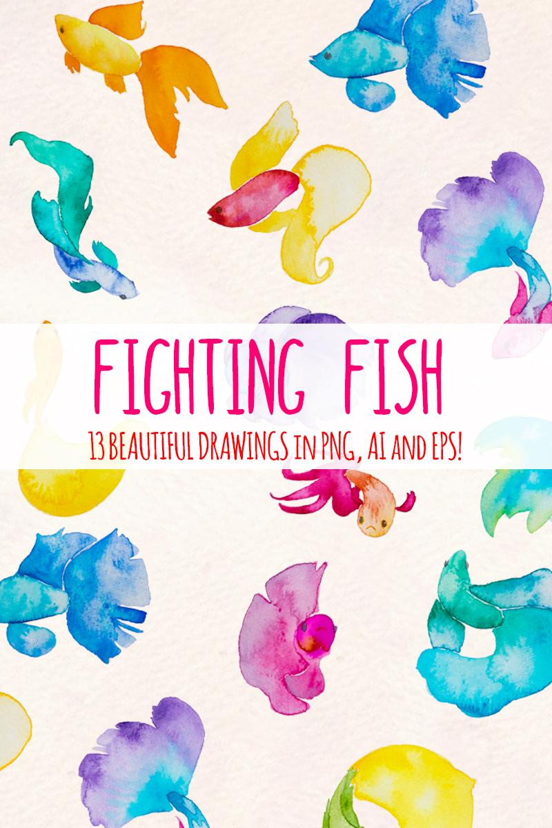13 Beta Fish Elements Illustration