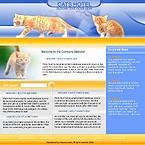 denver style site graphic designs cat cats hotel pets animals pet