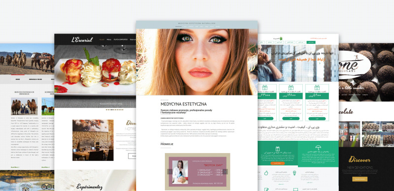 Augusto - Freelance Designer Moto CMS 3 Template - Features Image 3