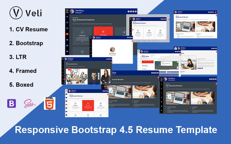 Veli   Resume / CV / vCard Landing Page Template