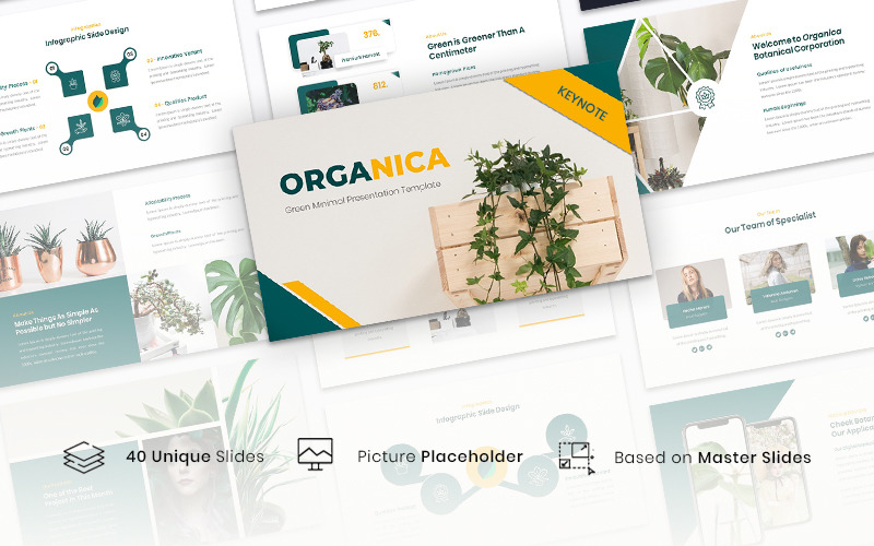 Organica - Green Minimal - Keynote template
