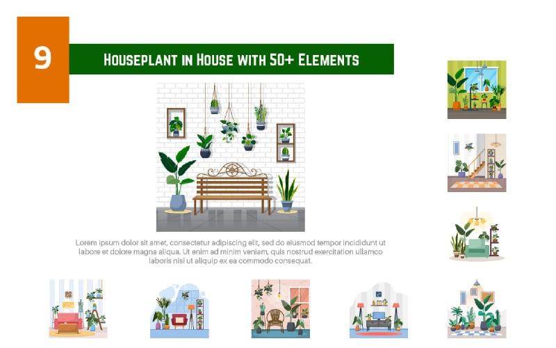 9 Zimmerpflanze im Haus mit mehr als 50 Elementen - Abbildung