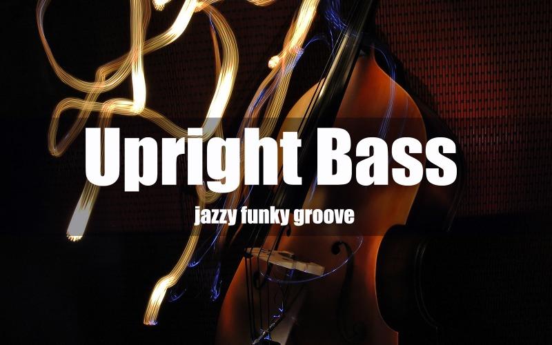 Kontrabass Funky Jazzy Stock Music
