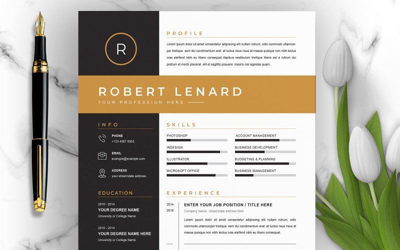 Robert / CV Template Printable Resume Templates