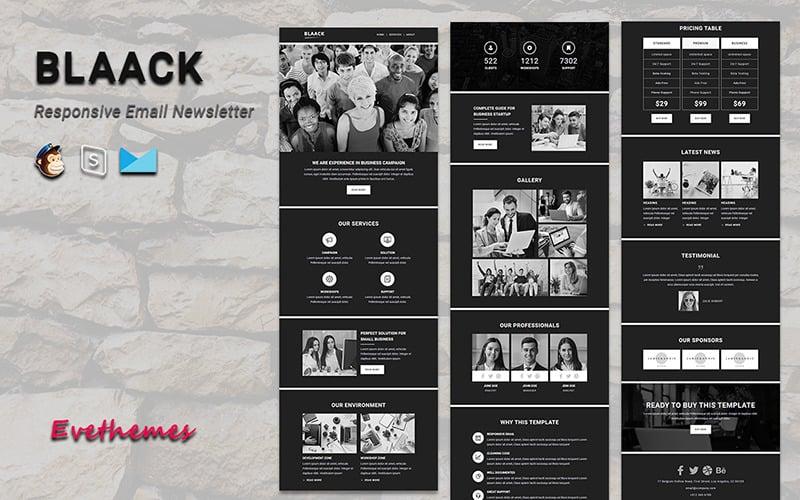 Blaack - Responsive Email Newsletter Template