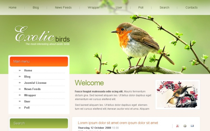 Birds Joomla Template