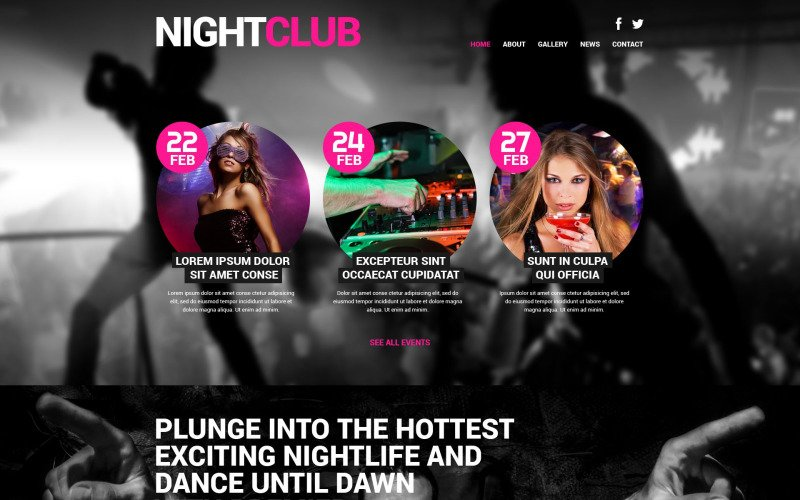 Night Club Euphoria WordPress Theme