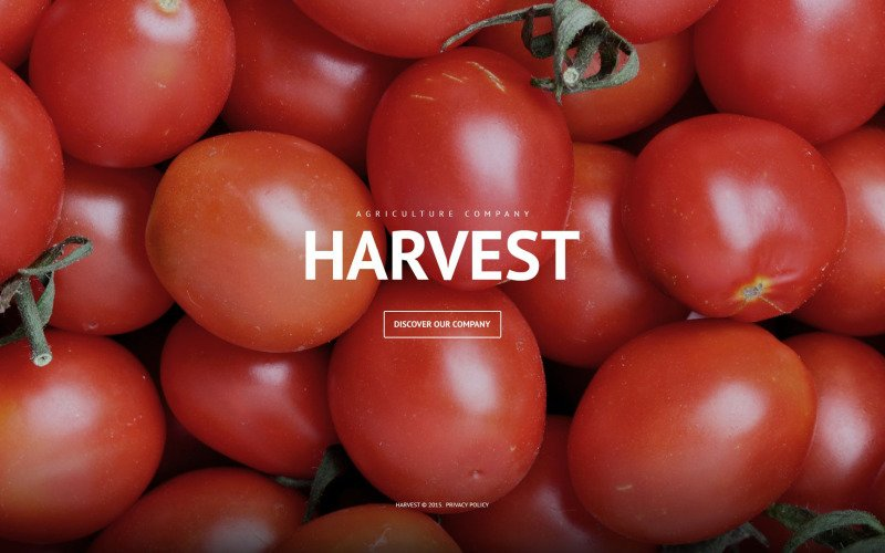 Agriculture Company WordPress Theme