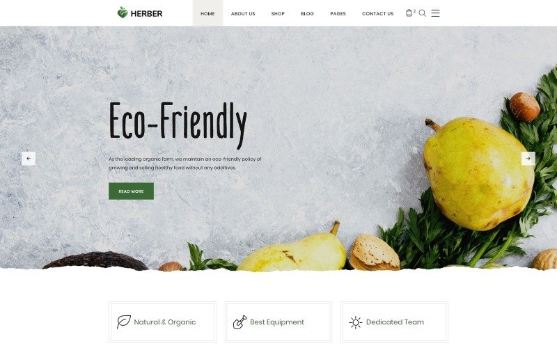 Herber - Accurate Organic Food Online Store Website Template