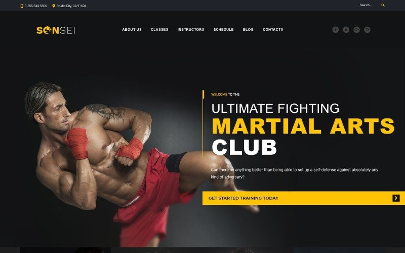 Sensei - Martial Arts WordPress Theme