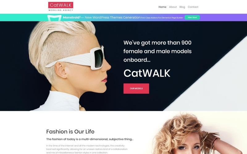 Catwalk - адаптивная тема WordPress для модельного агентства