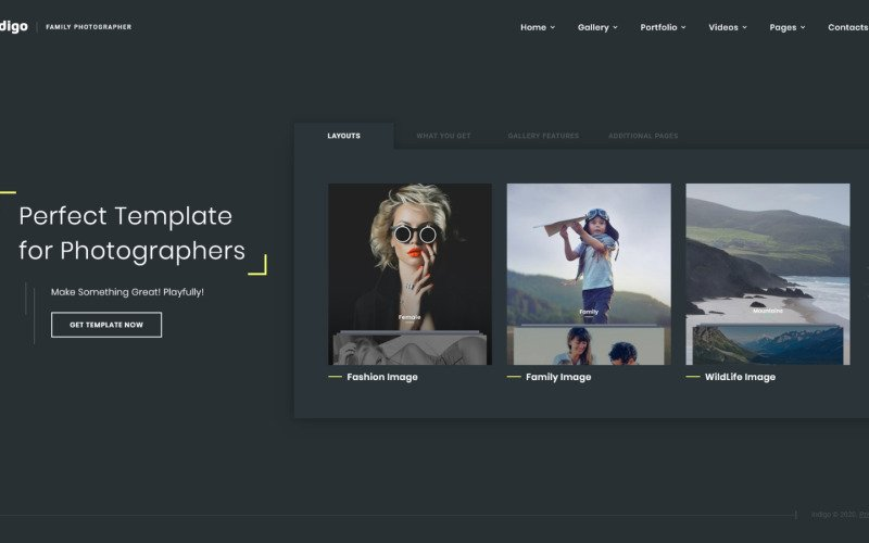 Indigo - Photo & Video Portfolio Multipurpose HTML Website Template