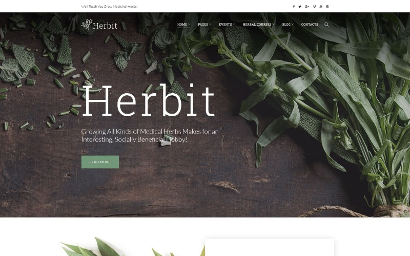Herbit WordPress Theme
