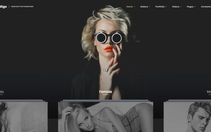 Indigo - Fashion Photographer Responsive Multipage Website Template