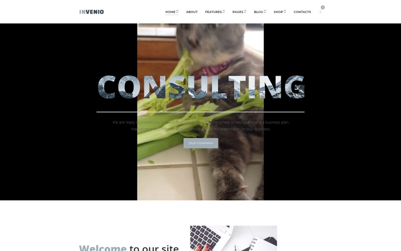 Invenio - Classy Financial Advisor WordPress Theme