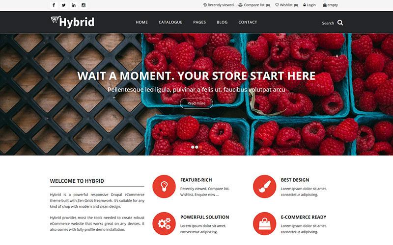 HYBRID - Powerful eCommerce Drupal Commerce Theme