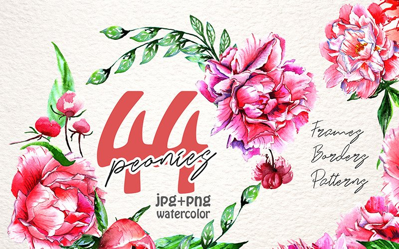 Lovely Pink Peony PNG Watercolor Set - Illustration