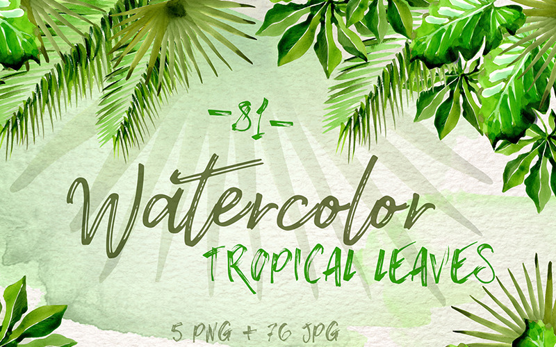Watercolor Tropical Leaves Png Set Illustration 70949 Download transparent tropical leaves png for free on pngkey.com. watercolor tropical leaves png set illustration
