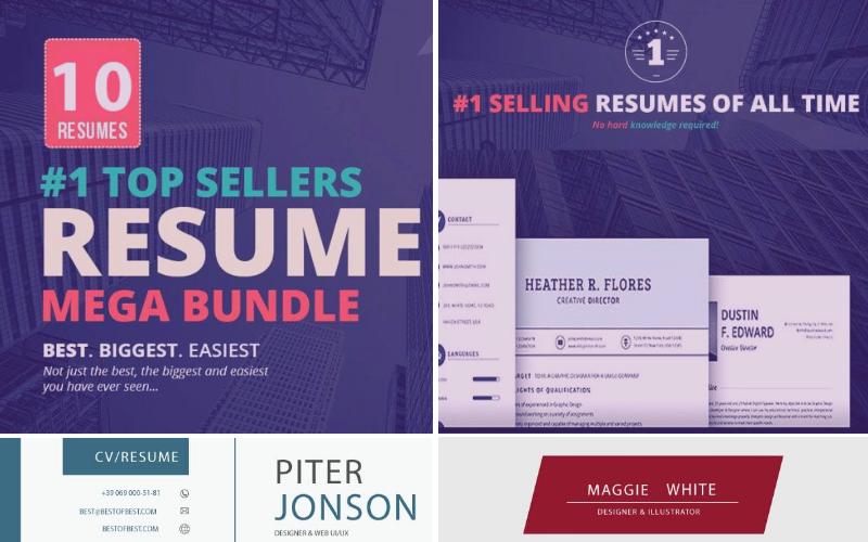 Bestseller-Lebenslauf: 10 Vorlagen-Bundle