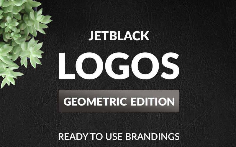 30 Premade logotyper - Geometrisk utgåva logotyp mall