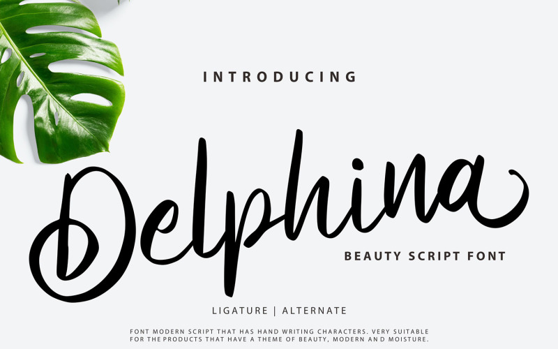 Delphina   Beauty Cursive Font