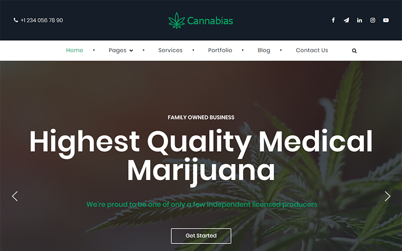 Cannabias medical marijuana business WordPress Theme