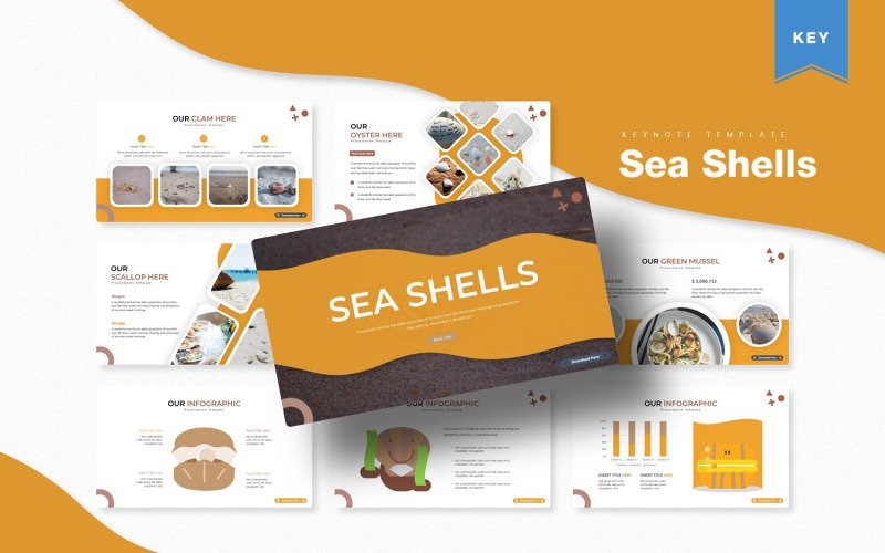 Mořské mušle - šablona Keynote