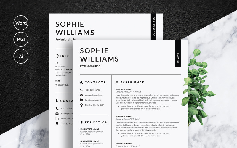 Modello di curriculum di Sophie Williams