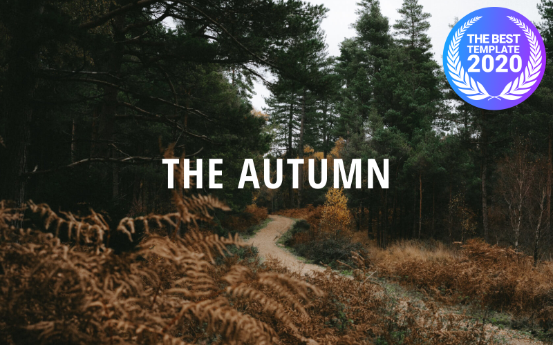 The Autumn - Creative Portfolio | Responsive Drupal Template