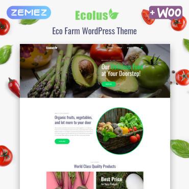 Купить  пофессиональные WordPress темы. Купить шаблон #80218 и создать сайт.