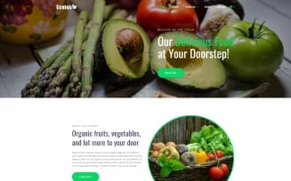 Ecolus - Organic Food Delivery ECommerce Modern WordPress Elementor Theme