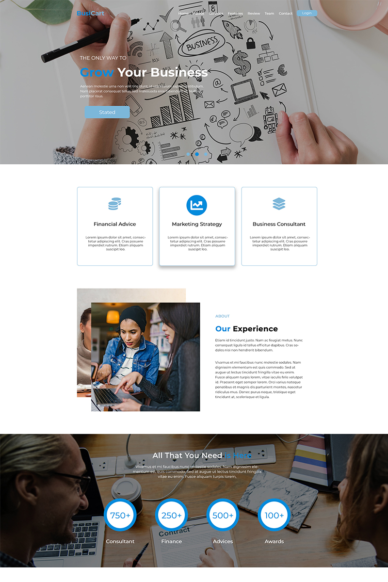 BusiCart - Finance / Consultancy Business PSD Template