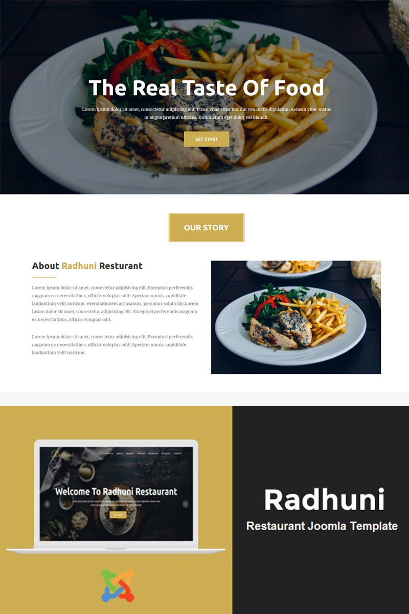 "Plantilla Joomla ""Radhuni - Multipurpose Business"" #81915"