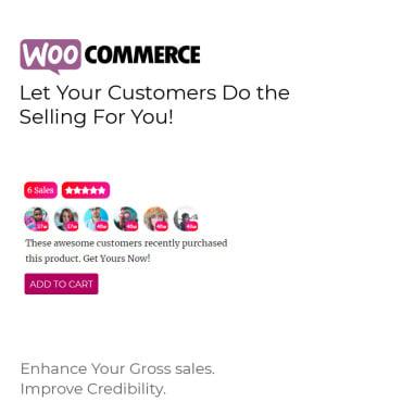 Купить  пофессиональные WordPress плагины. Купить шаблон #83241 и создать сайт.
