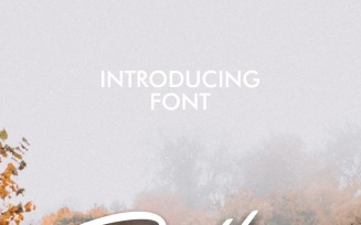 Rotters Font