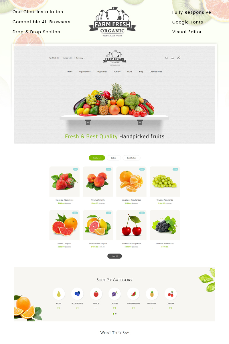 "Tema Shopify #83976 ""Organic Store"""