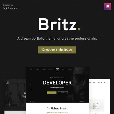 Designer Portfolio Templates | TemplateMonster