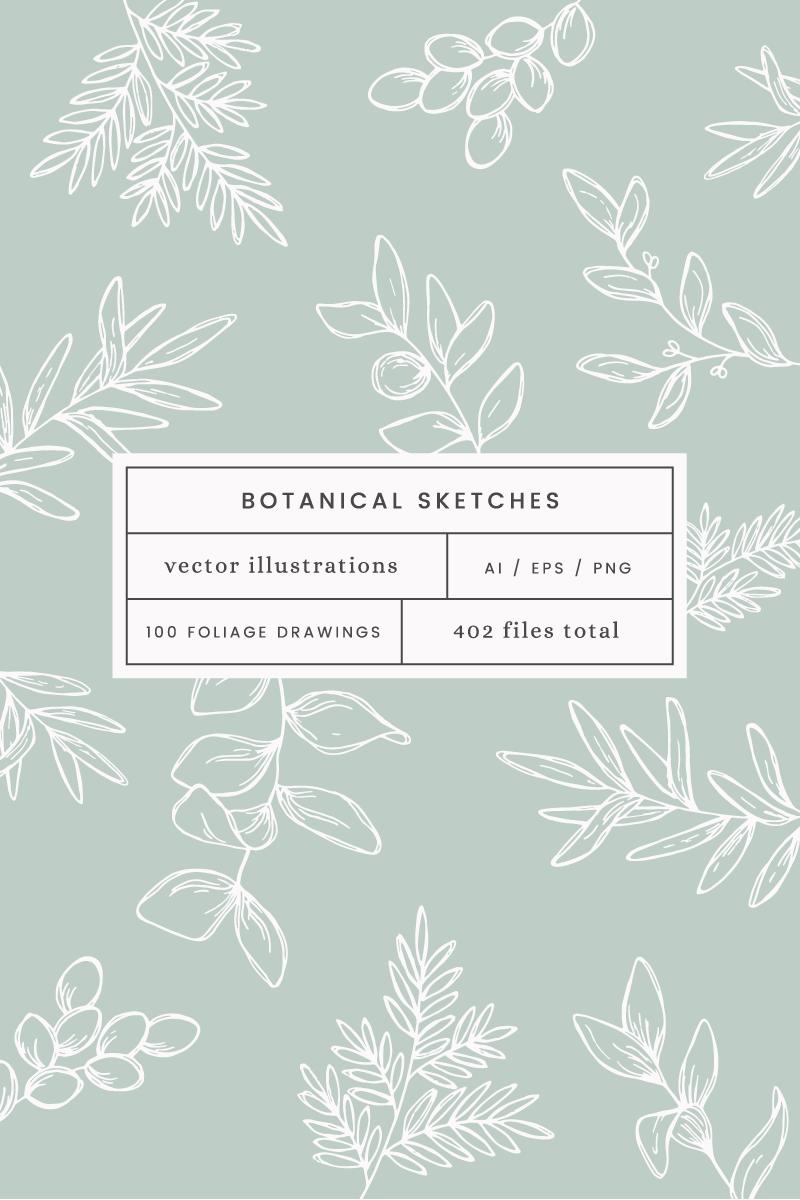Botanical Sketch Vector Illustration