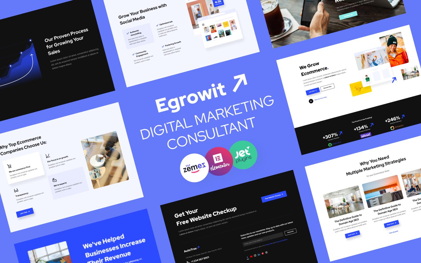 Egrowit - Digital Marketing Consultant WordPress Elementor Theme WordPress Theme