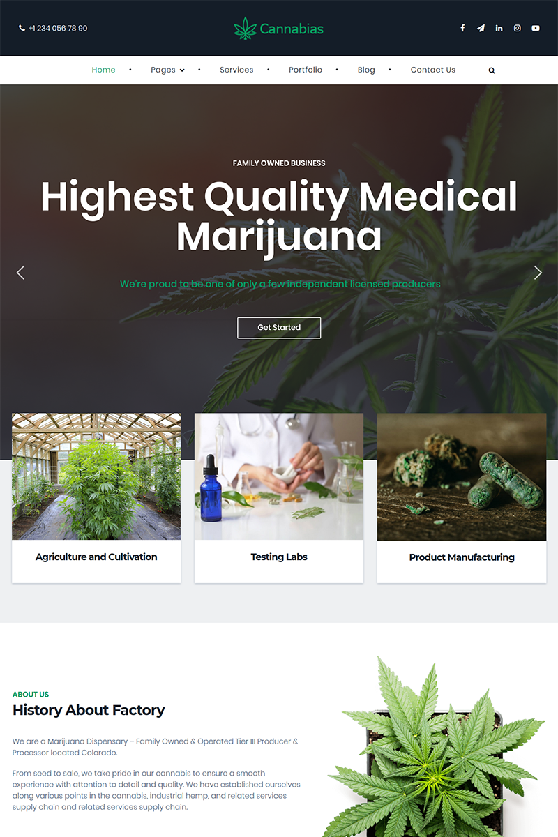 """Cannabias medical marijuana business"" 响应式WordPress模板 #86132 - 截图"