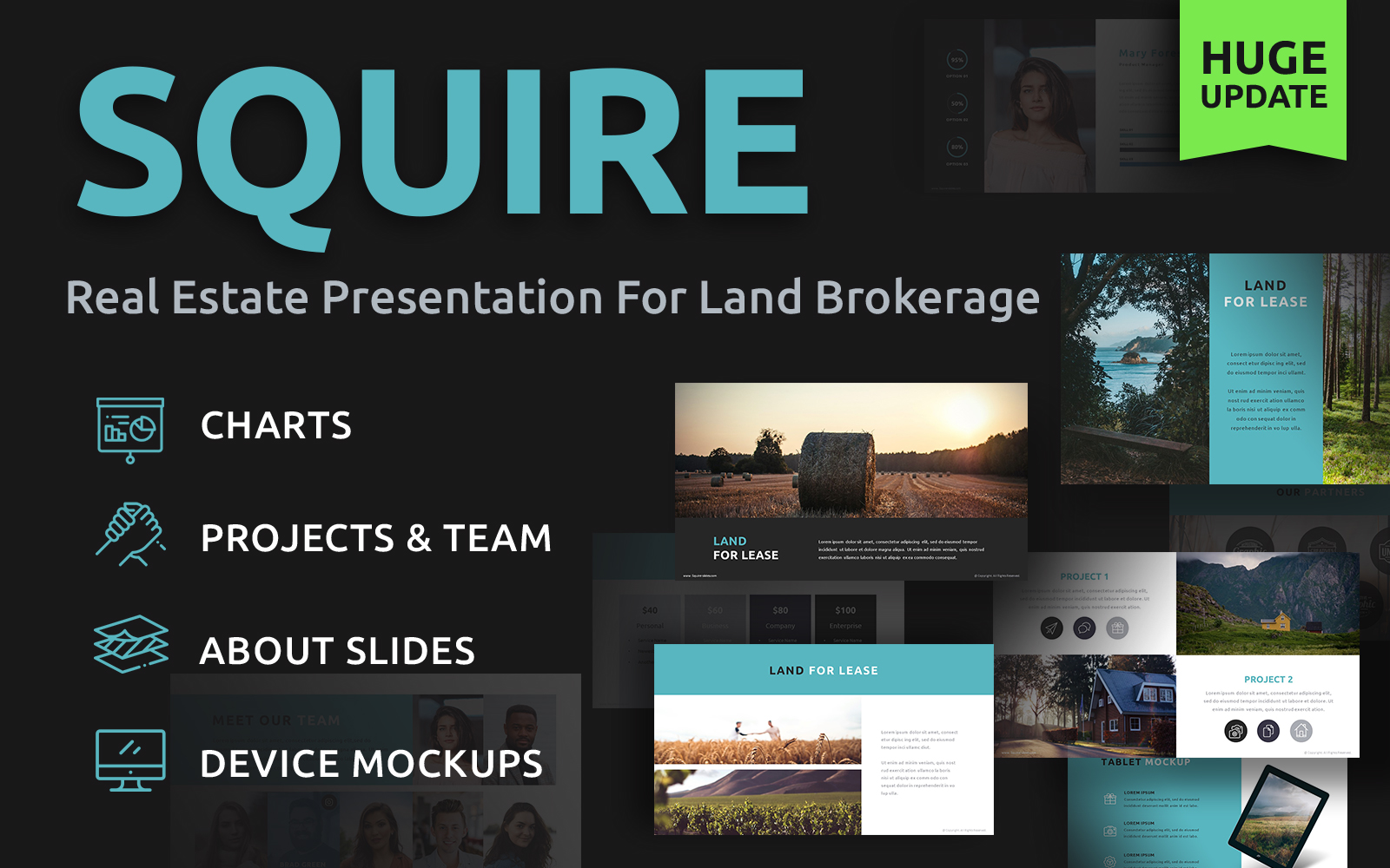 """Squire Land Brokerage"" - PowerPoint шаблон №86641"