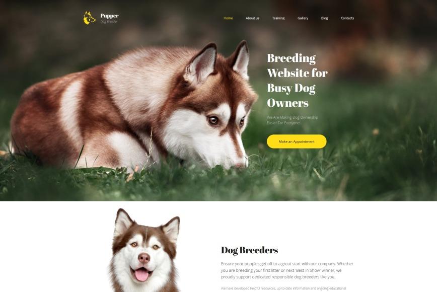dog breeder website template for dog care site motocms. Black Bedroom Furniture Sets. Home Design Ideas