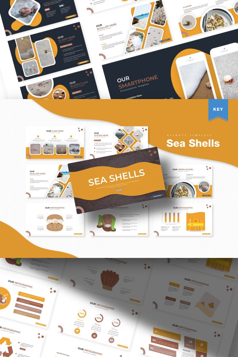 """Sea Shells  "" Keynote Template №87140 - screenshot"