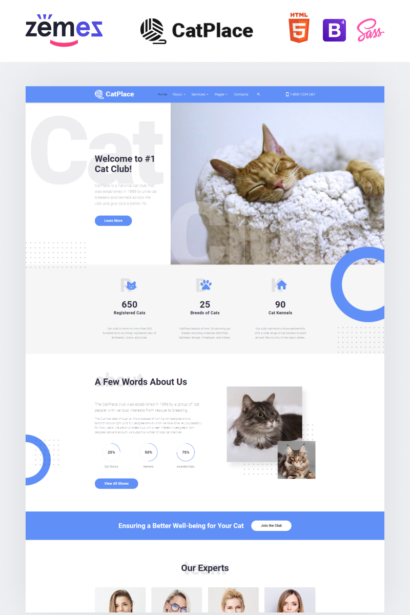 """""""Cat Place - Animals & Pets Multipage HTML"""" 响应式网页模板 #88372"""