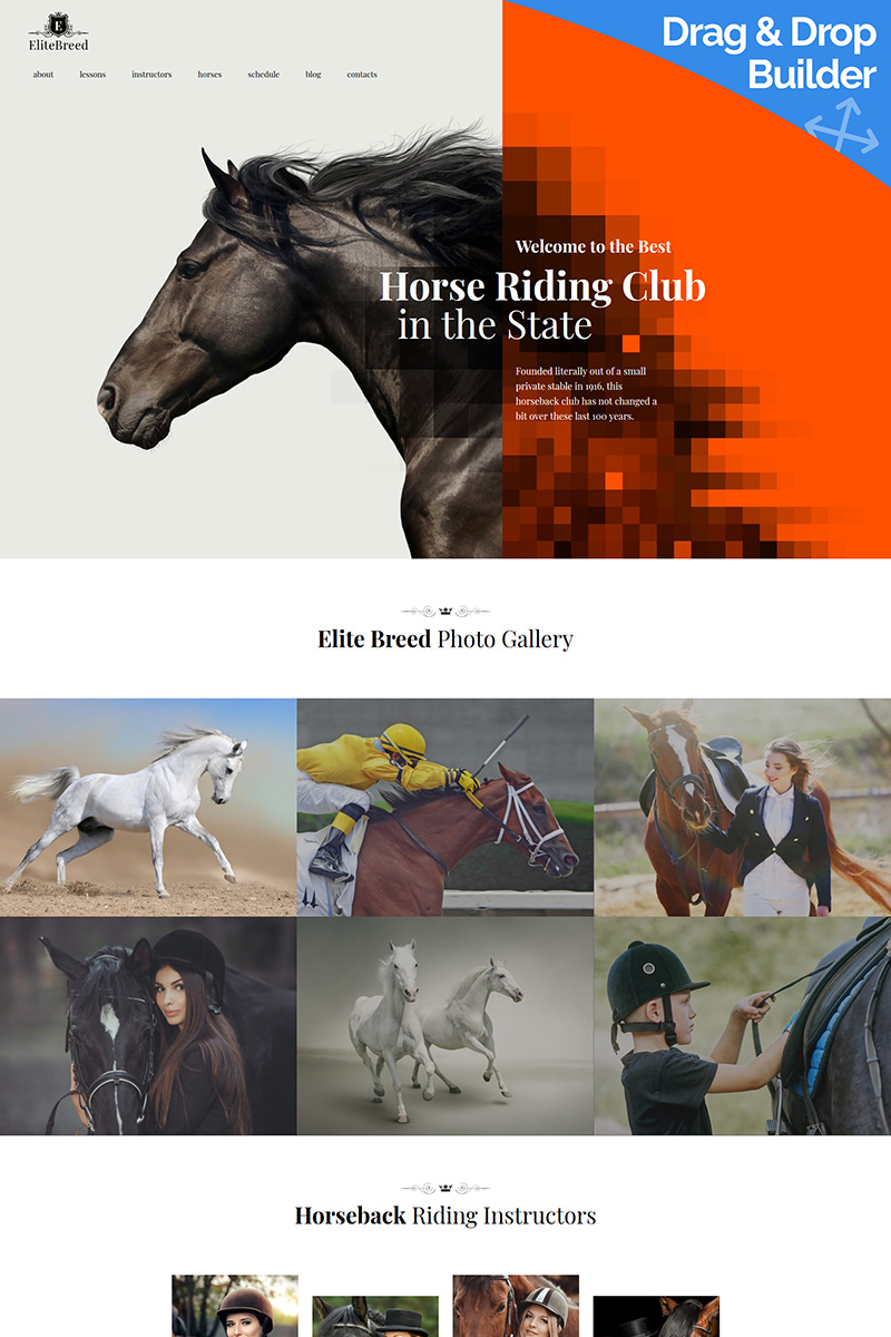 """Elite Breed - Horse Riding Club"" modèle Moto CMS 3 adaptatif #89332"