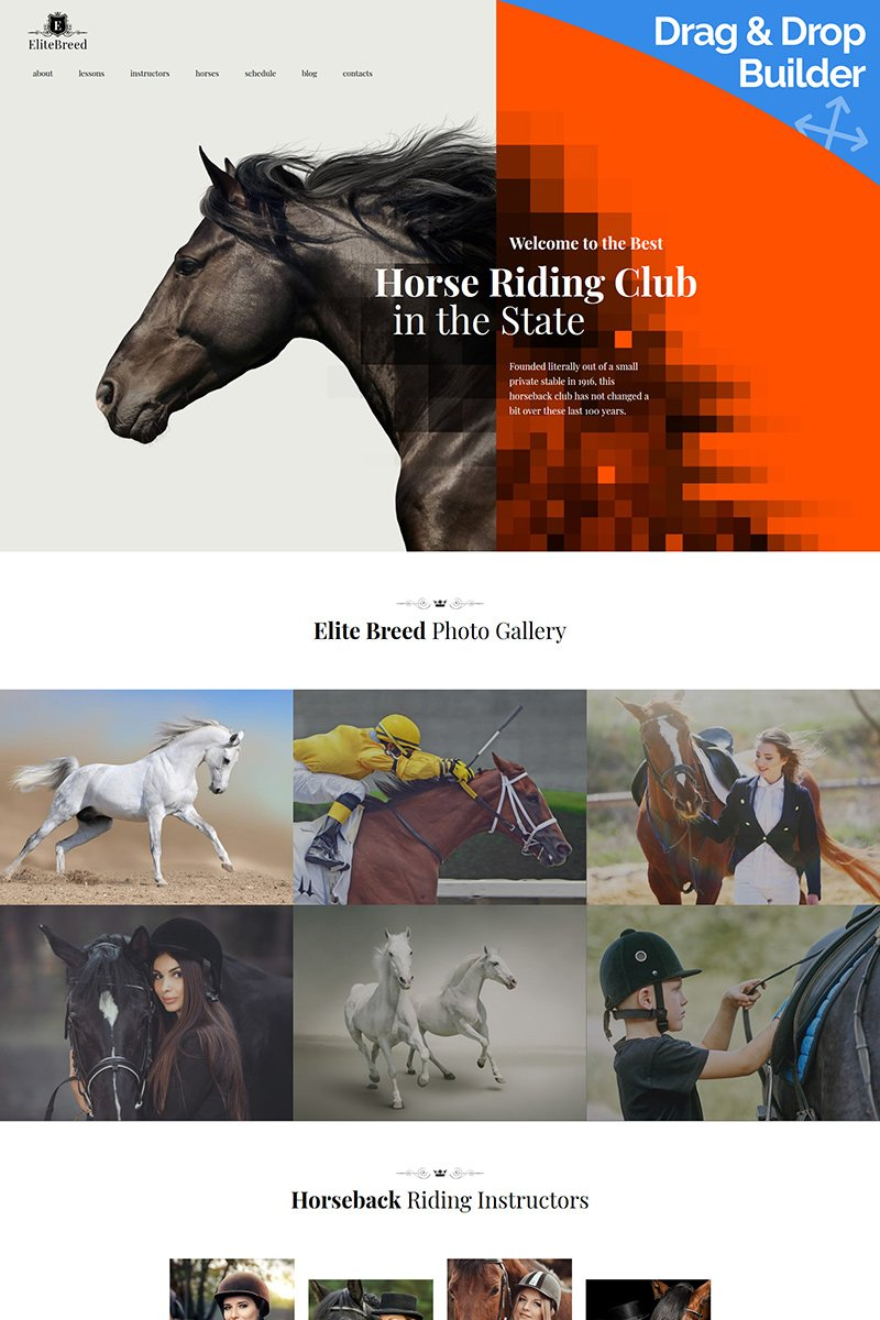 "Template Moto CMS 3 Responsive #89332 ""Elite Breed - Horse Riding Club"""