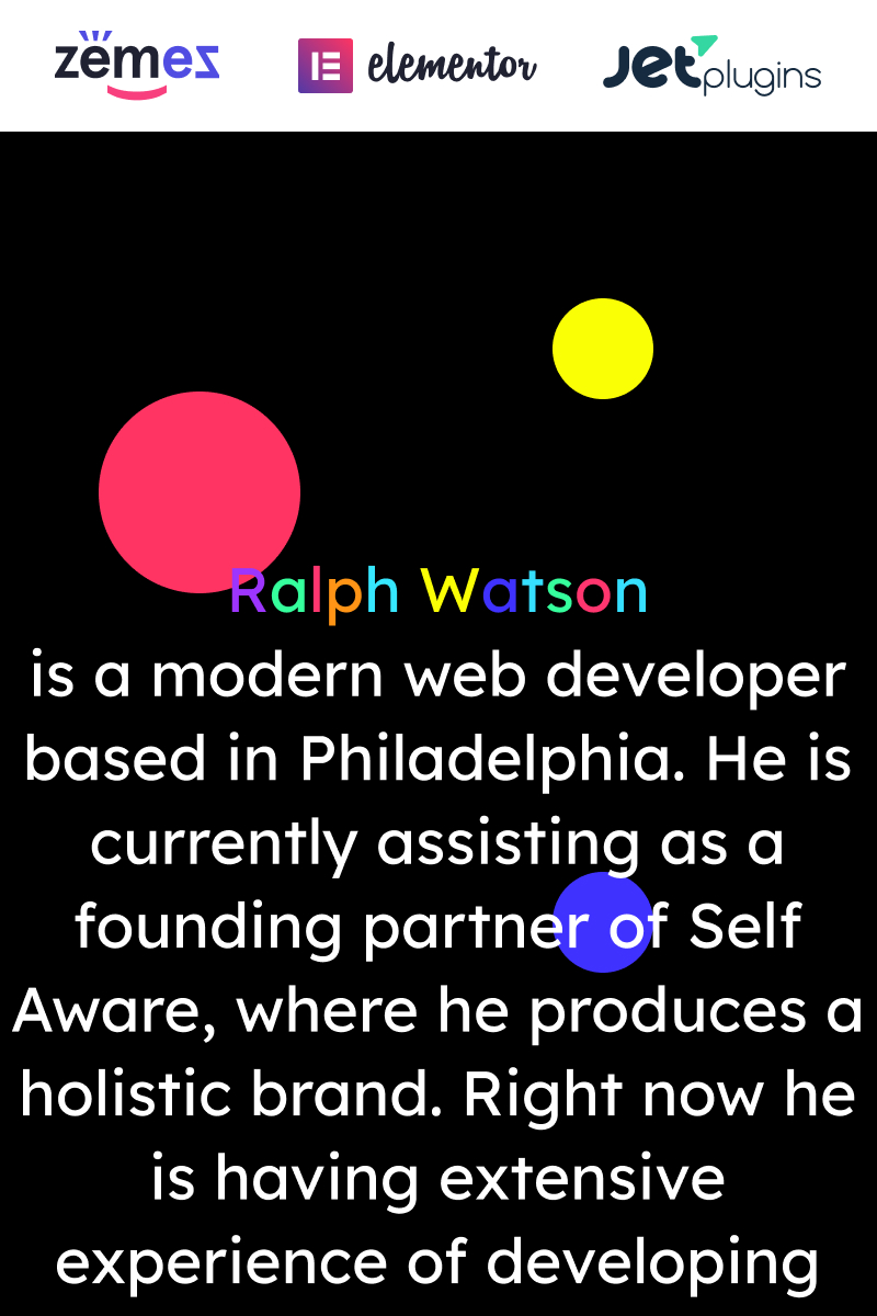 Responsive Web Portfolio - Minimalistic Web Developer Portfolio Template Wordpress #90669