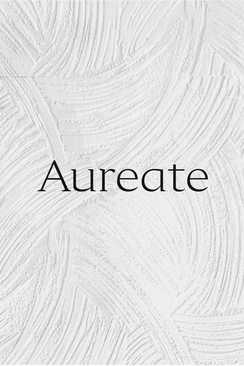 """Aureate - A Sophisticated Serif"" police de caractère  #91219"